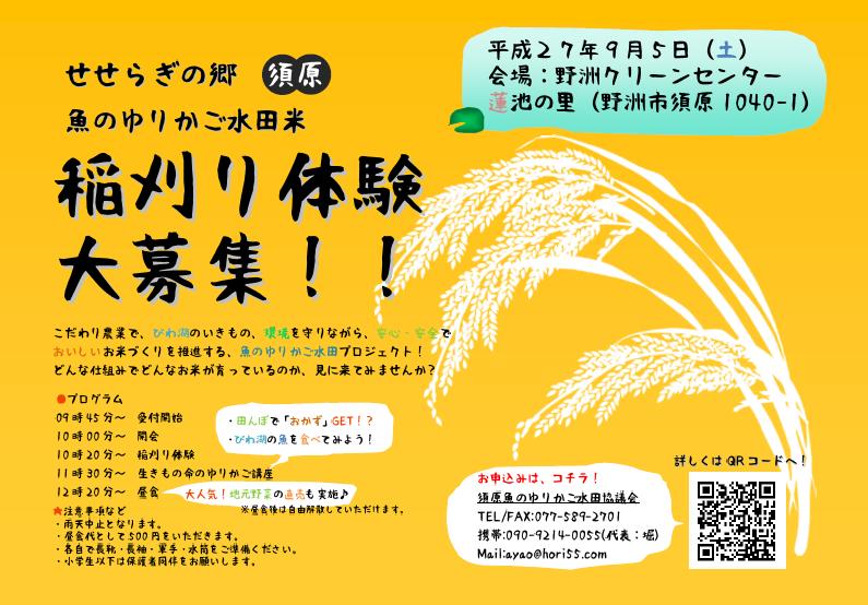 稲刈り体験(ブログ用)